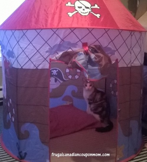 MasterMind-Toys-Pirate's-Den-Playhouse-Review