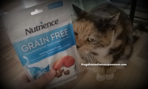 Nutrience-Grain-Free-Cat-Products-Keeping-Pets-Healthy